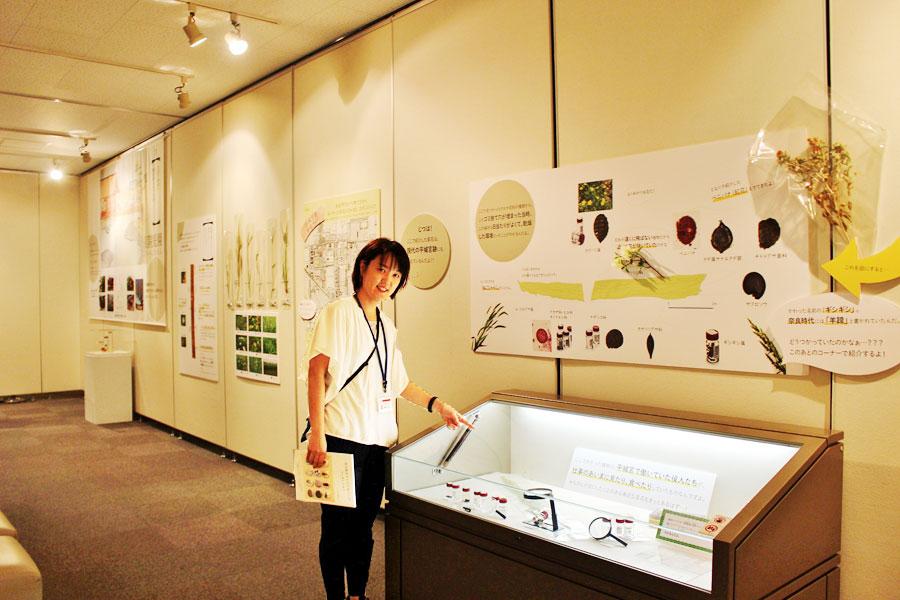 「奈良文化財研究所」の廣瀬智子アソシエイトフェローが企画担当。小4、小2のママなので、「子どもたちが夏に涼しくて無料で遊べるものを」と企画した