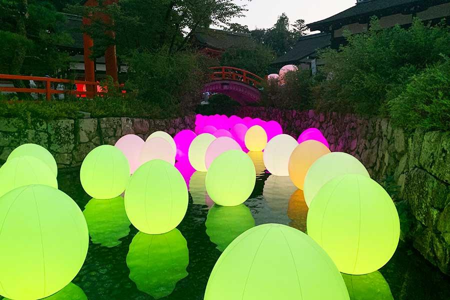 「水面にたちつづける呼応する生命ー下鴨神社 御手洗池」。池のほとりからだれかが光のオブジェにタッチすると、光の色が変化。放射線状に近隣のオブジェに伝播していく