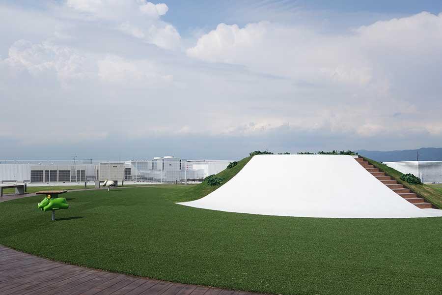 屋上には芝生ひろばも