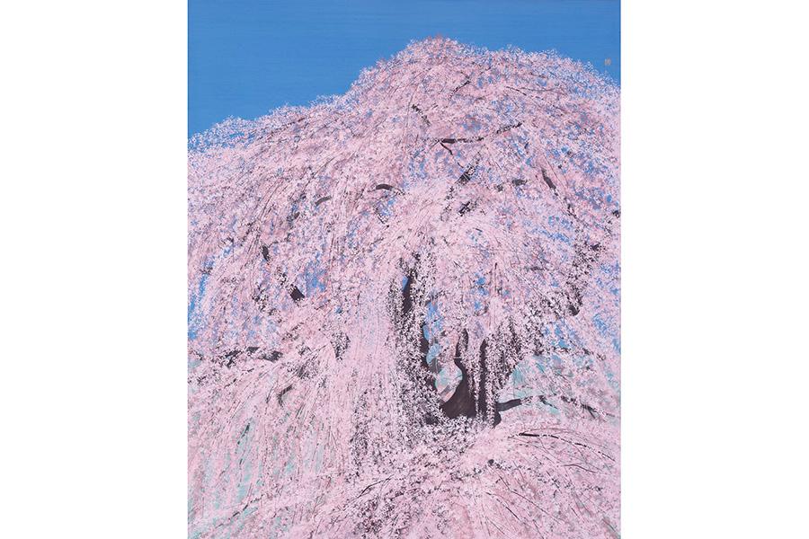 『三春の瀧桜』2013年 軽井沢千住博美術館蔵
