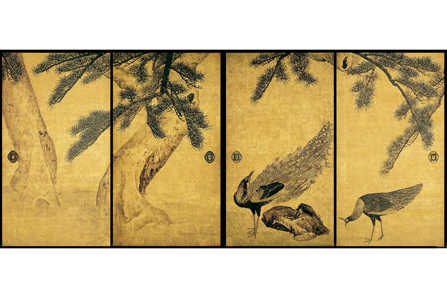 重要文化財「松に孔雀図」(全16面のうち4面) 円山応挙、寛政7年(1795)、兵庫・大乗寺蔵、通期展示
