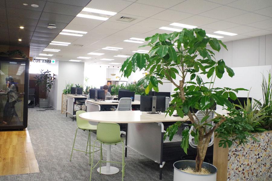 至るところに緑が見えるアマゾン大阪オフィスの新フロア