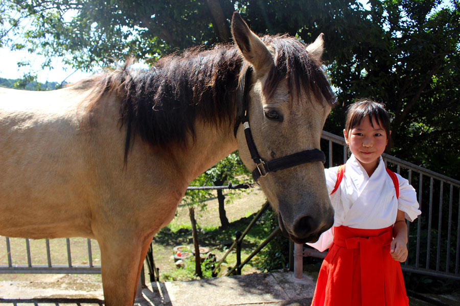 Twitterで「おねえちゃん」と呼ばれる宮司の長女・京香ちゃん。乗馬を習い、休日はいづたんのお世話をしている