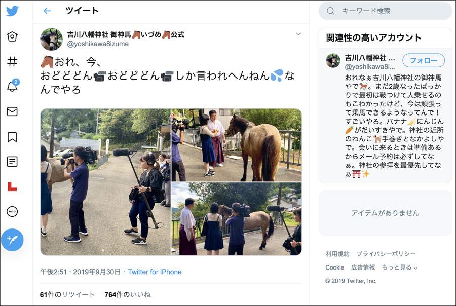 「いづたん」こと吉川八幡神社の御神馬いづめのTwitterアカウントは関西弁でつぶやかれる