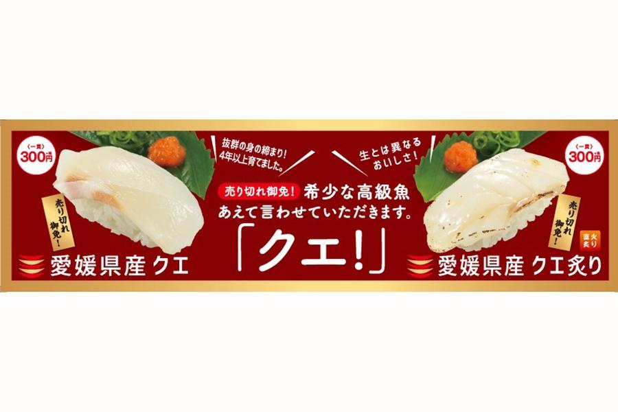 1週間限定で、「愛媛県産 クエ」を販売
