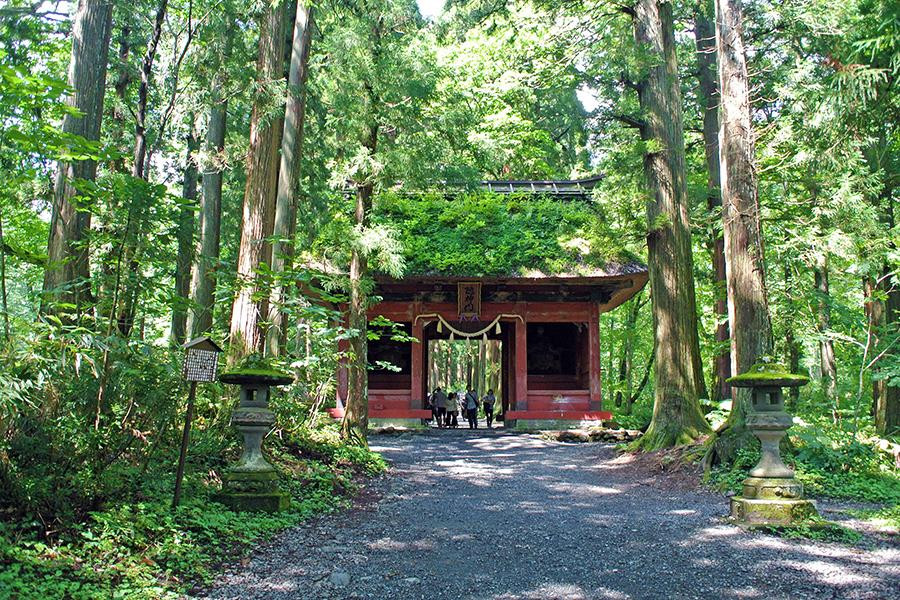 16位、初登場の「戸隠神社 奥社」(長野県長野市)静かな杉並木、清々しい空気に心身ともに洗われる