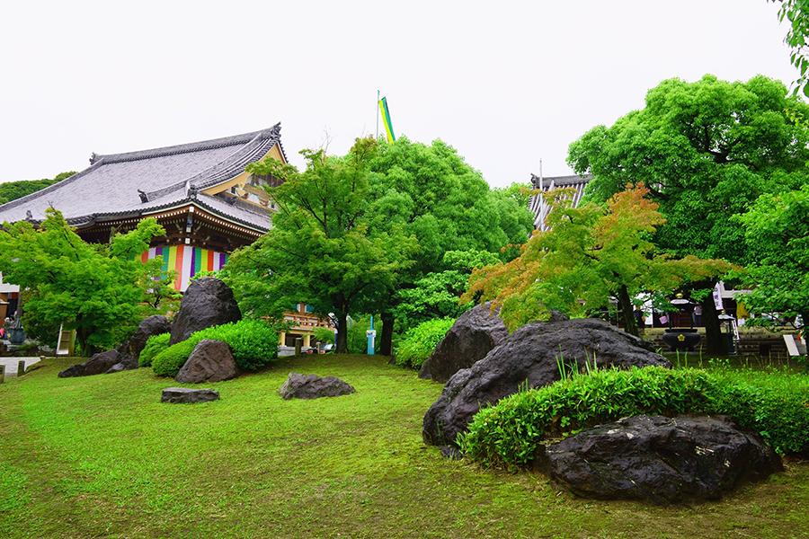 11位、初登場の「智積院」(京都市東山区)桃山文化を代表する金碧障壁画は息をのむ美しさ!