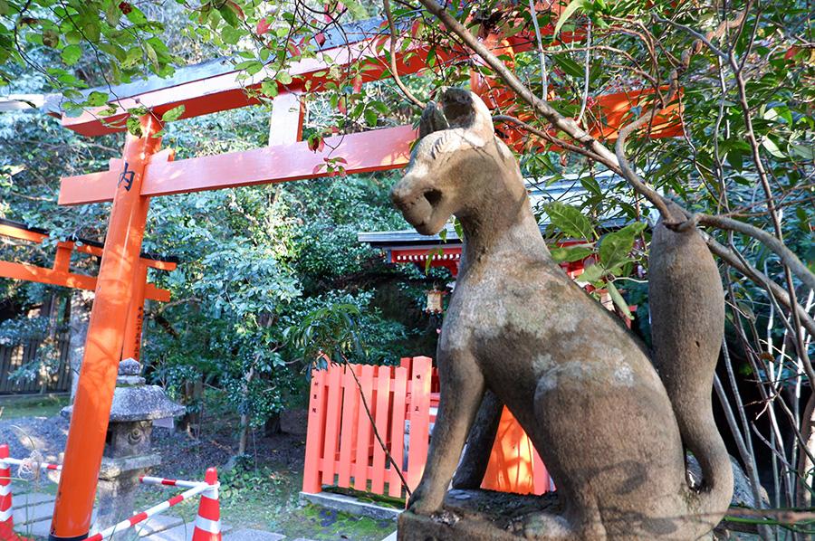 商売繁盛の神・美田稲荷社の狛狐