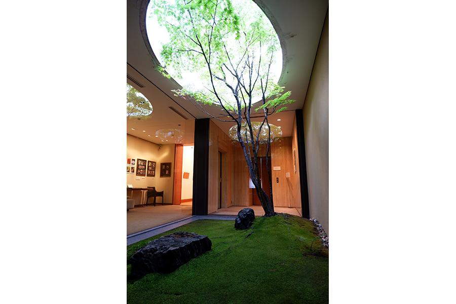 5階にある小さな庭園は、祇園の真ん中にあるビルの中とは思えないしっとりした趣