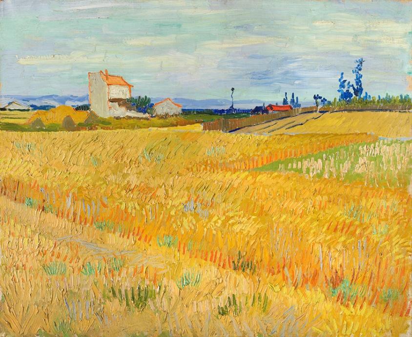 フィンセント・ファン・ゴッホ《麦畑》 1888年6月 油彩・カンヴァス 50×61cm P.&N.デ・ブール財団 ©P.&N. de Boer Foundation