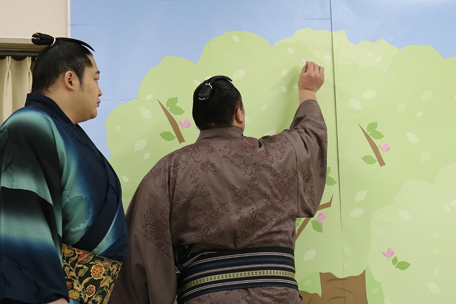 「キット伝わる☆おしチョコ」専用ボードにメッセージを貼る、朝乃山