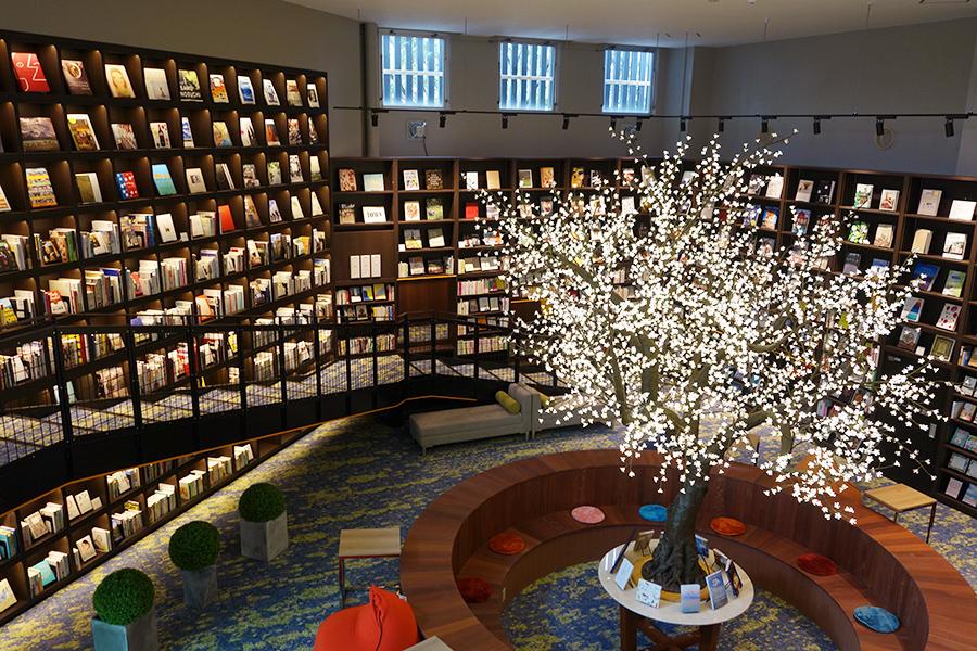 天井まで本が並ぶライブラリーエリア