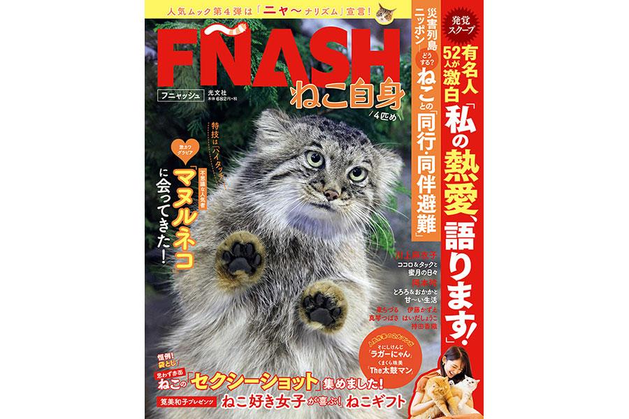 『にゃんぱく』で週刊誌『FLASH』(光文社)とのコラボ