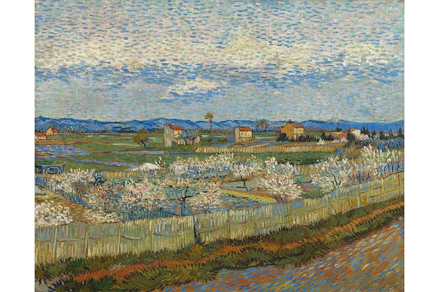 フィンセント・ファン・ゴッホ 《花咲く桃の木々》 1889年 コートールド美術館 © Courtauld Gallery (The Samuel Courtauld Trust)