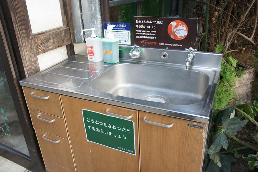アルコール消毒液や足裏マットによる消毒を通常より増やして防疫を強化(神戸どうぶつ王国)