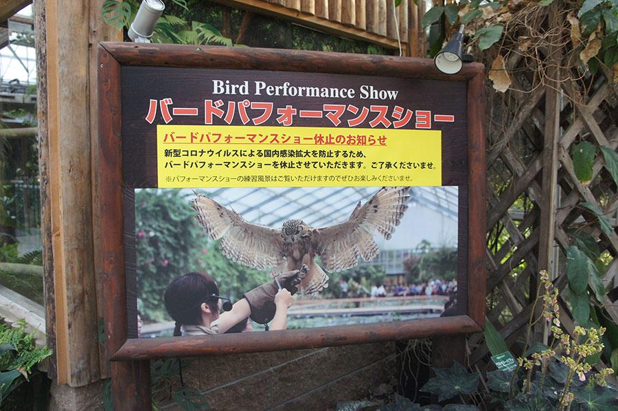 バードショーなどの一部ショーやアトラクションは期間未定で中止(神戸どうぶつ王国)