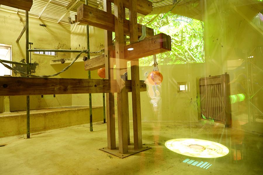 映像は、アーティストの人長果月(ひとおさかずき)が制作。オレンジの玉(ブイ)にセンサーが仕掛けられていて、動かすと映像が連動する