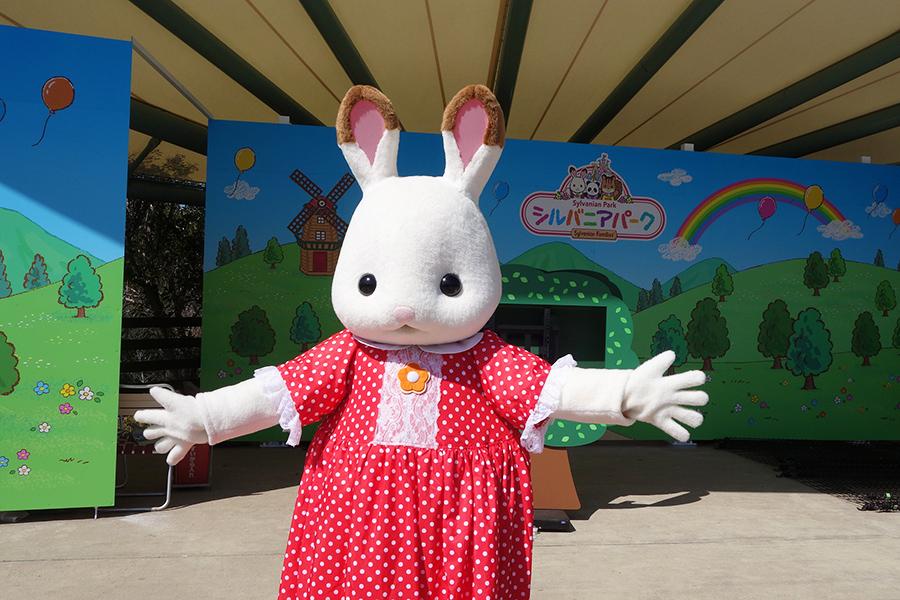 ステージの撮影タイムは、毎日ショコラウサギの女の子たちが登場
