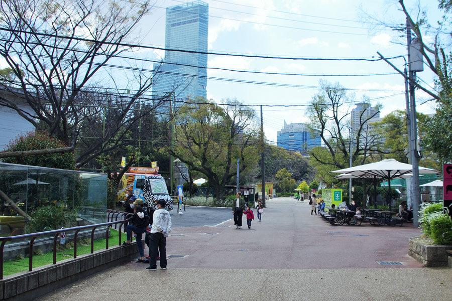 3週間ぶりに天王寺動物園が再開。園内には久しぶりに来園者の賑やかな声が響いた(3月24日・天王寺動物園)