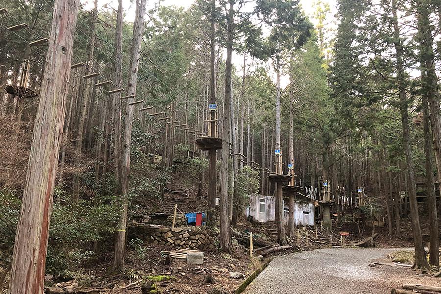 自然のなかを滑走できるジップラインもある、「冒険の森 in のせ」
