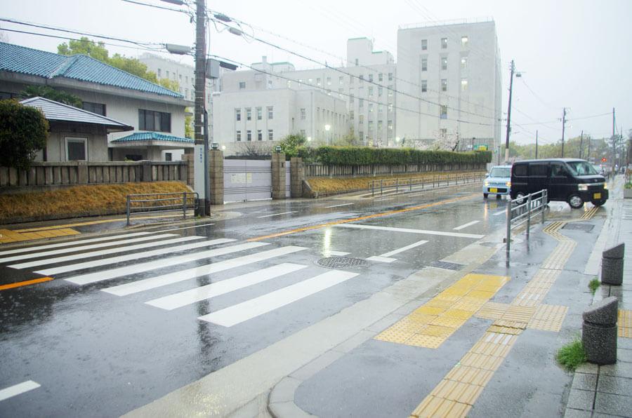 大阪府庁の南側にある府庁本館と別館をつなぐ横断歩道。ここにも信号機は設置されていない(4月1日・大阪府庁)