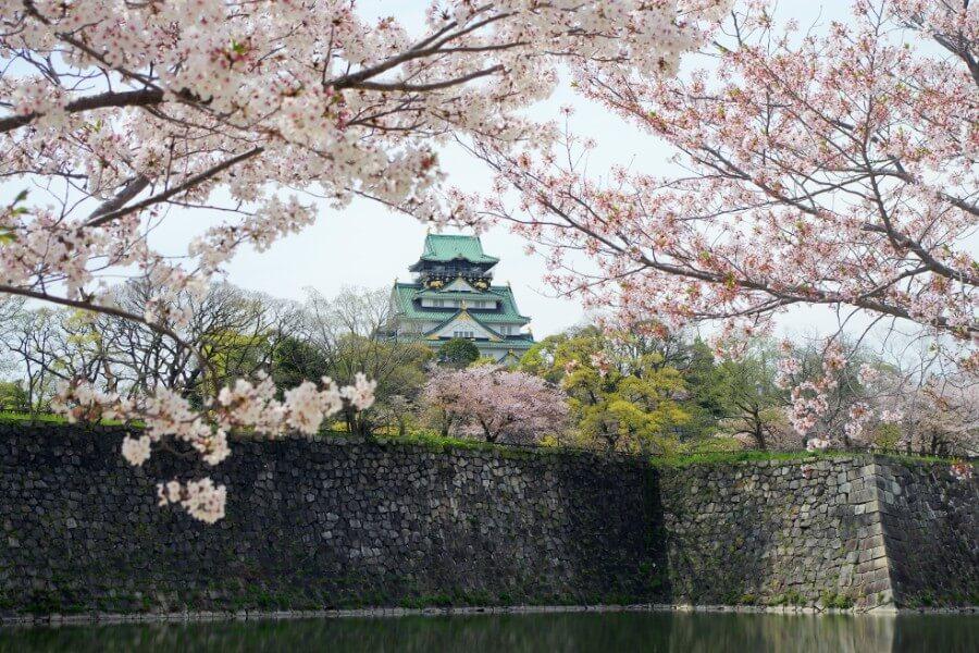 国内の城では姫路城を抜いて全国最多の入場者数となっていた大阪城(4月11日)