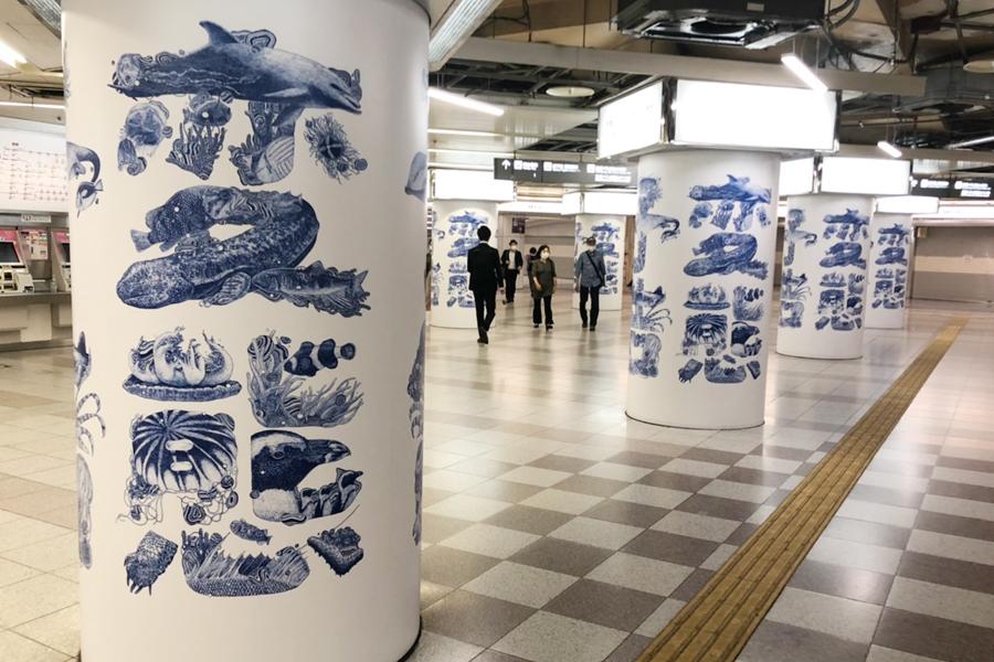 突然の「変態」予告、休館中の京都水族館に一体何が?