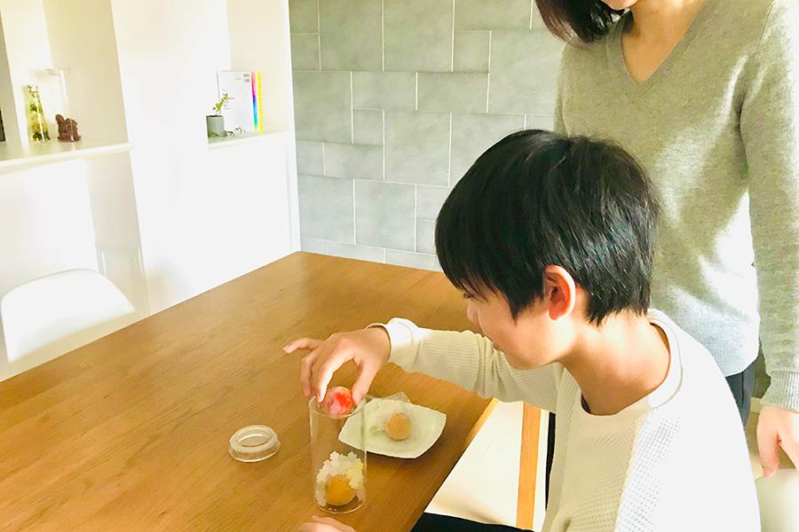 子どもと気軽に楽しめる食のキット。写真は「蝶矢梅キット」