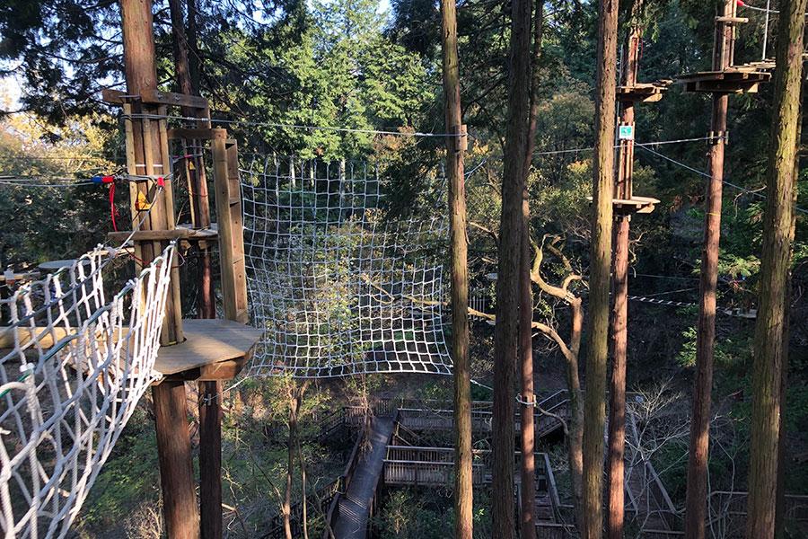 キャンプ場併設の「冒険の森 in おうじ」