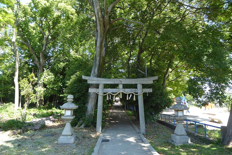 緑に囲まれた「二ノ宮神社」