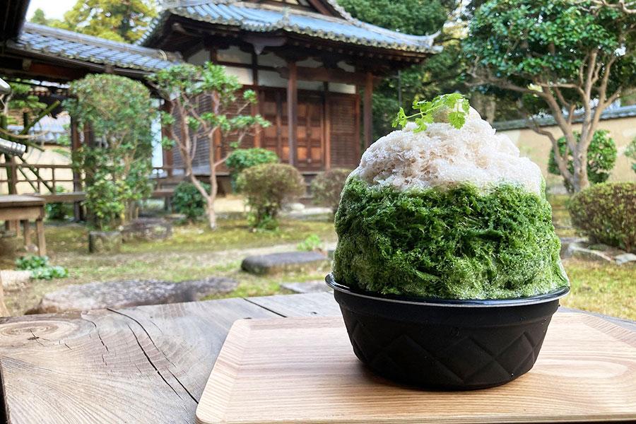 西吉野のはちみつと柿の葉を使ったメレンゲを添えた大和抹茶と柿の葉茶のかき氷(1100円)。メレンゲや柿の葉茶はお土産に販売も