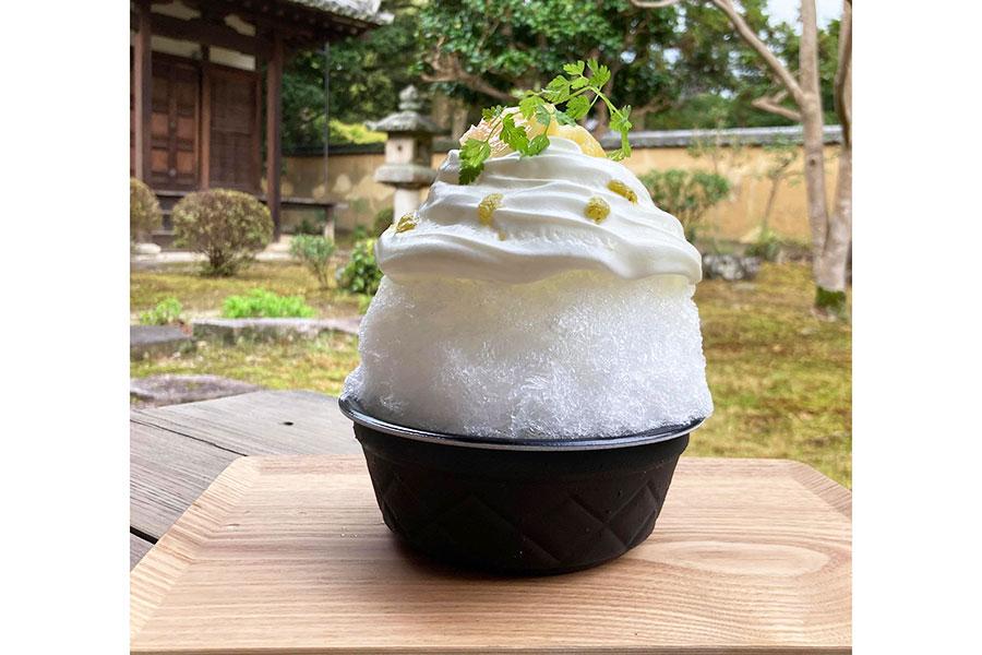甘くみずみずしい岡山県赤磐市の桃を味わえる桃柑橘レアチーズ(1400円)。この時期は、清水白桃と夢白桃という品種を使用