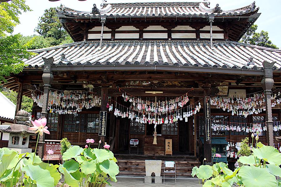 奈良県内屈指の「蓮寺」として知られる「生蓮寺」。「晴れ乞い祈願」の寺というのも国内ではめずらしい