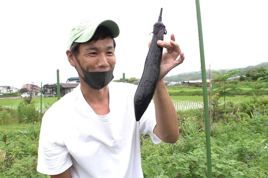 和歌山で農園を営む石郷岡大助さん 写真提供:MBS