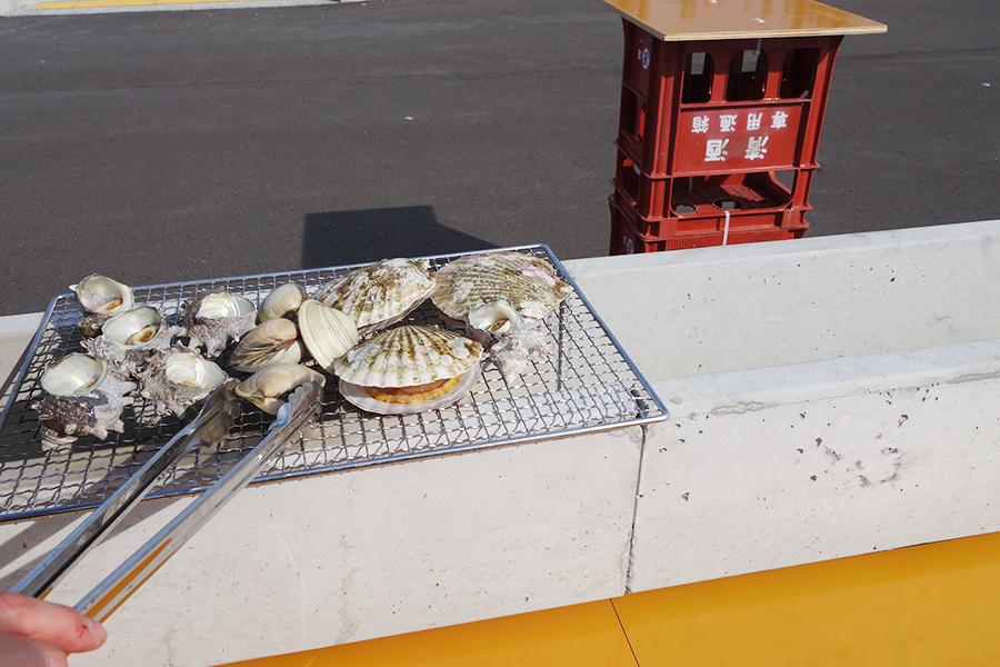 初の近大「泉南あなご」も、南大阪に漁港マルシェ