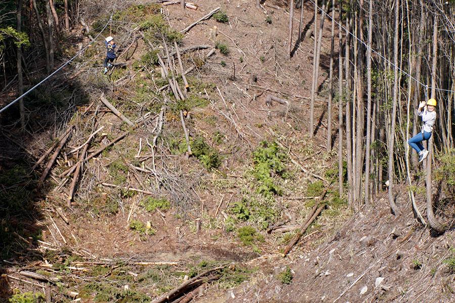 山の中を滑走するジップラインに挑戦できる「冒険の森 in やまぞえ」