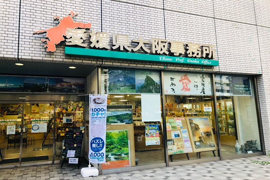 真珠ガチャガチャが設置されている「愛媛県大阪事務所」(大阪市西区)