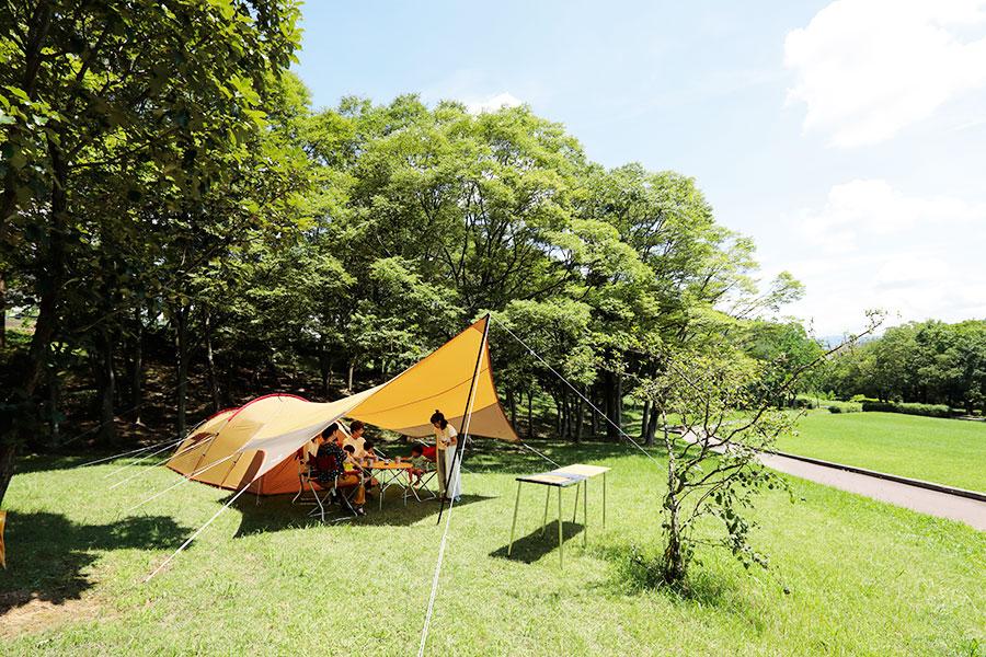 大阪・堺の公園でキャンプ、お手軽グランピングも