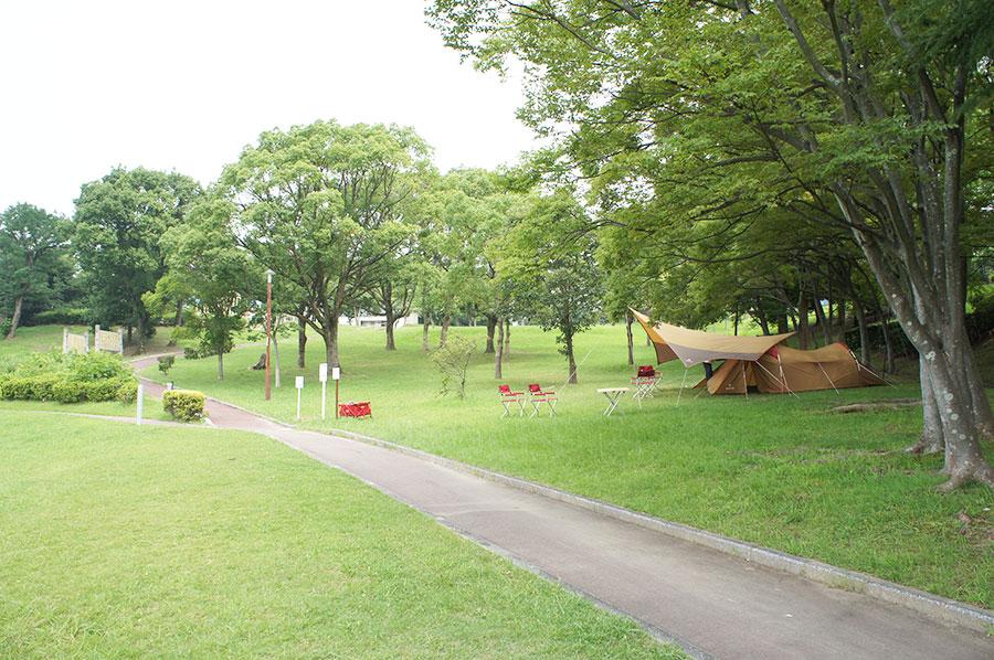 大阪・堺の大蓮公園リニューアル、遊びが充実