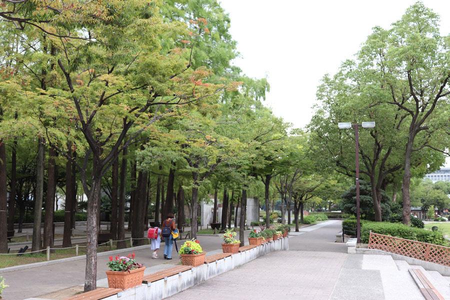 「みちひろば」として整備されるゾーン。樹木の密植が公園とフラワーロードを分断しているとの指摘を受け、解放感のあるアプローチを目指す(9月24日・東遊園地)