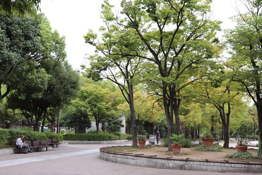 樹木に深く覆われ、都心でありながら森を感じられる現在も、けっこう好きなのだが……(9月24日・東遊園地)