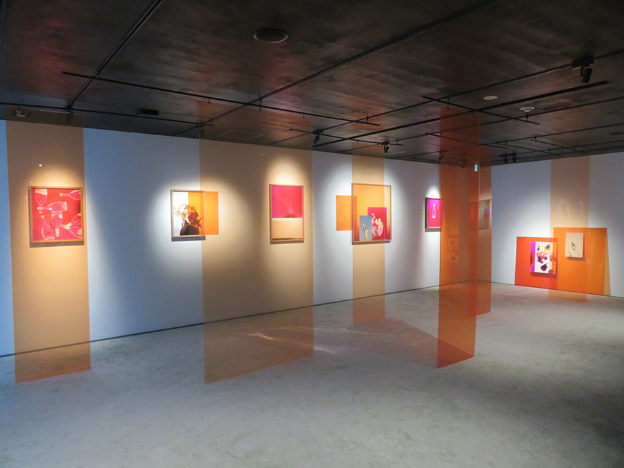 HOSOO GALLERYでのエルサ・レディエの展示
