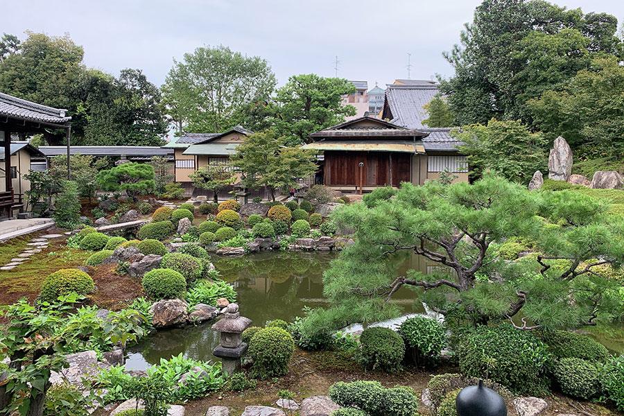 京都府指定名勝庭園の池泉廻遊式庭園。通常は非公開の庭園を散策することができる