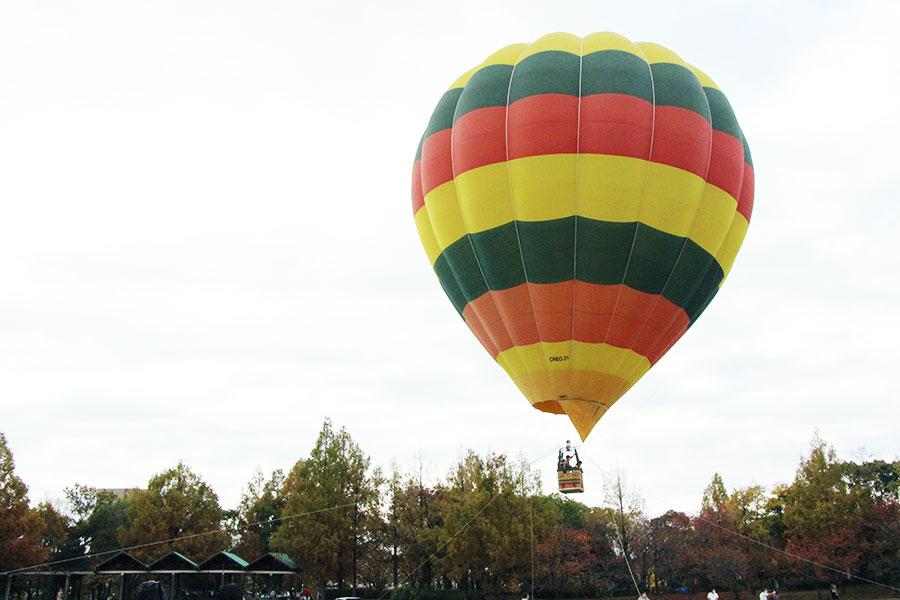 「PARK JAM」では大型熱気球の乗船体験、青空コンサートなど家族で楽しめる催しが多数おこなわれた「花博記念公園鶴見緑地」