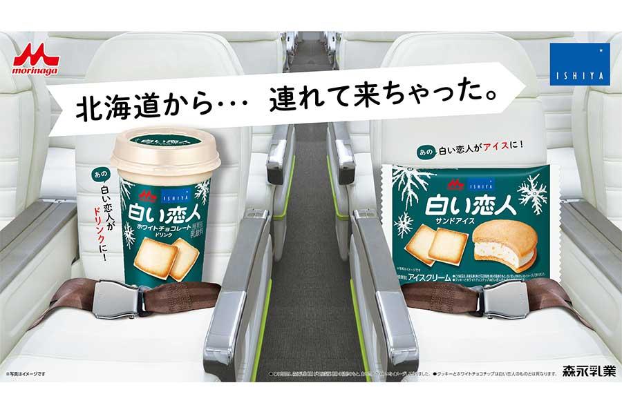 北海道土産の定番「白い恋人」と「森永乳業」がタッグを組み、「白い恋人サンドアイス」と「白い恋人ホワイトチョコレートドリンク」を販売