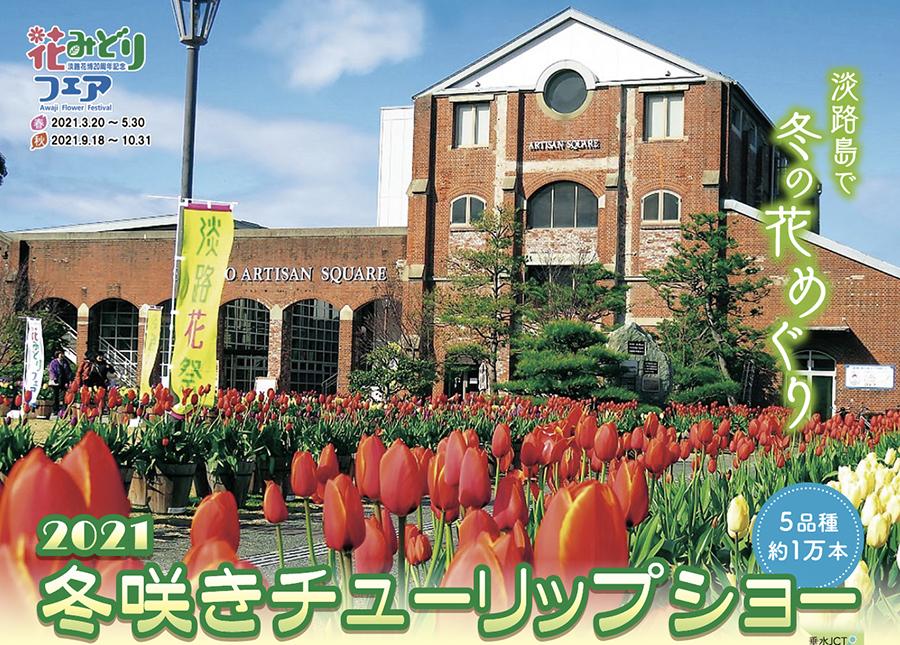 「洲本市民広場」で開催の『冬咲きチューリップショー』