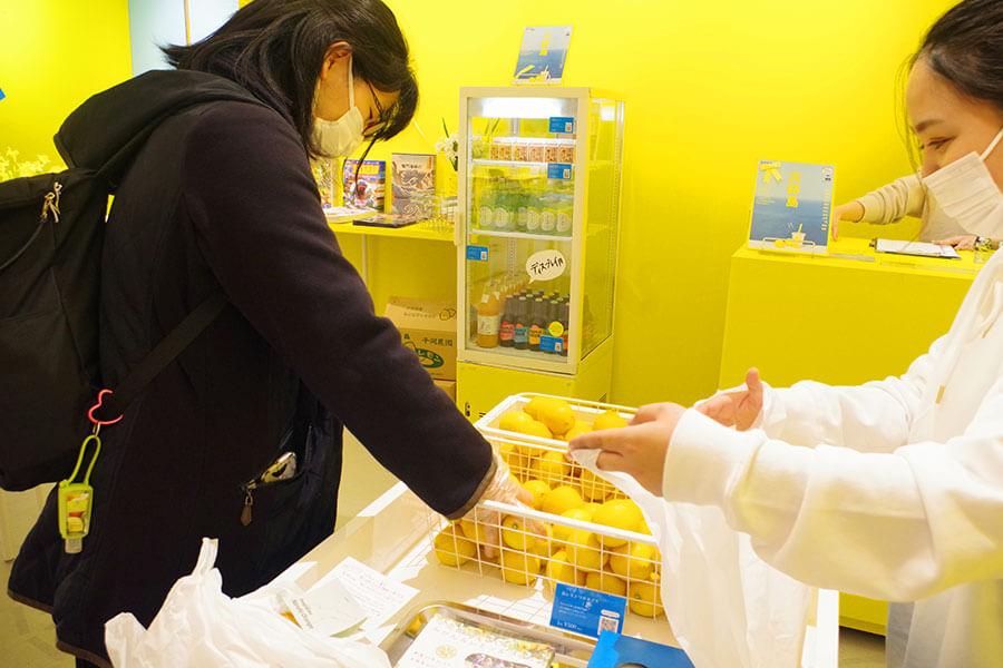 1回500円でチャレンジできる「島レモンつかみどり」。実施にはアルコール消毒と手袋の着用が必要