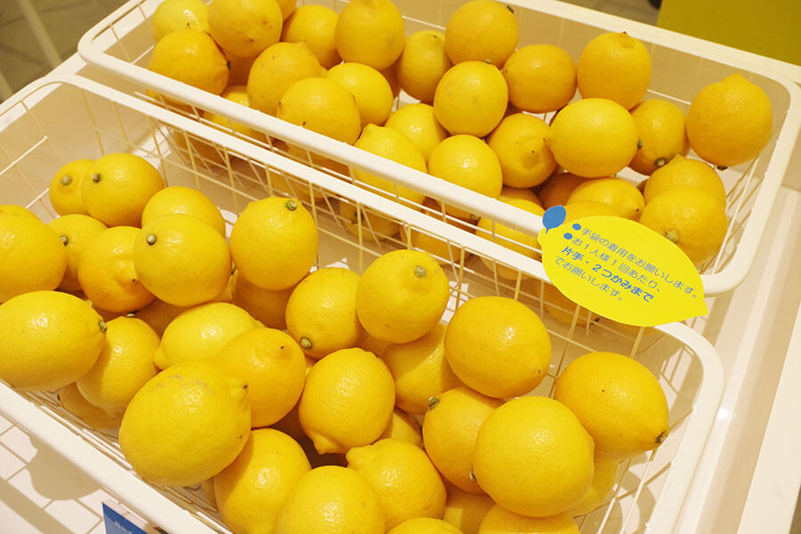 きれいに色づいた島レモン
