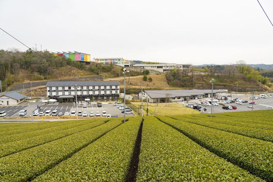 目の前に茶畑が広がる「フェアフィールド・バイ・マリオット・京都みなみやましろ」と道の駅「お茶の京都 みなみやましろ村」