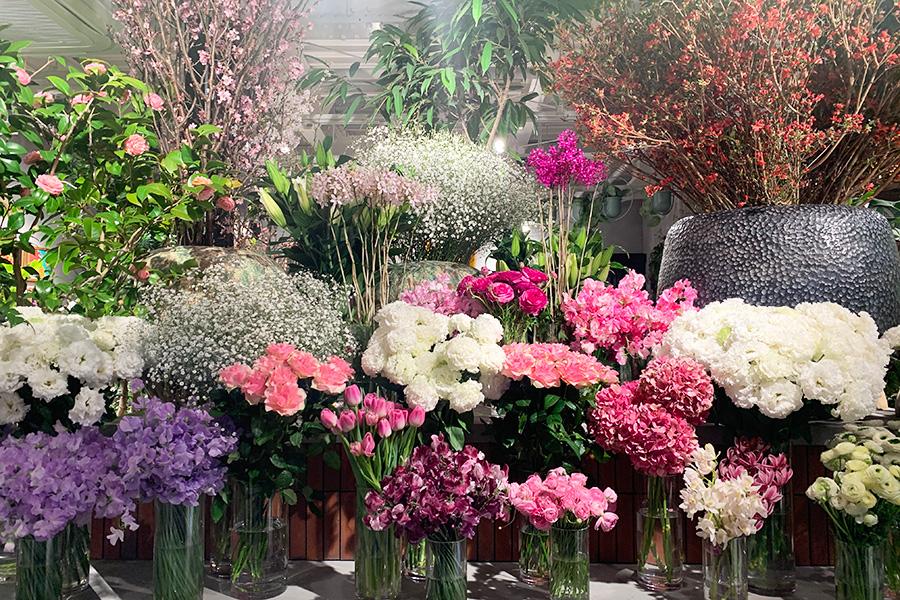 色とりどりの花が並ぶ圧巻のディスプレー